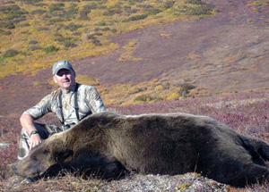alaska grizzley bear hunting