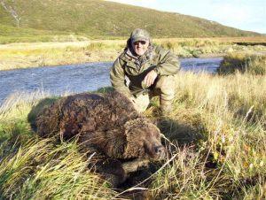 bear.h21