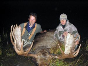 moose.6