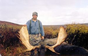 moose_17