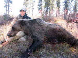 bear.h18